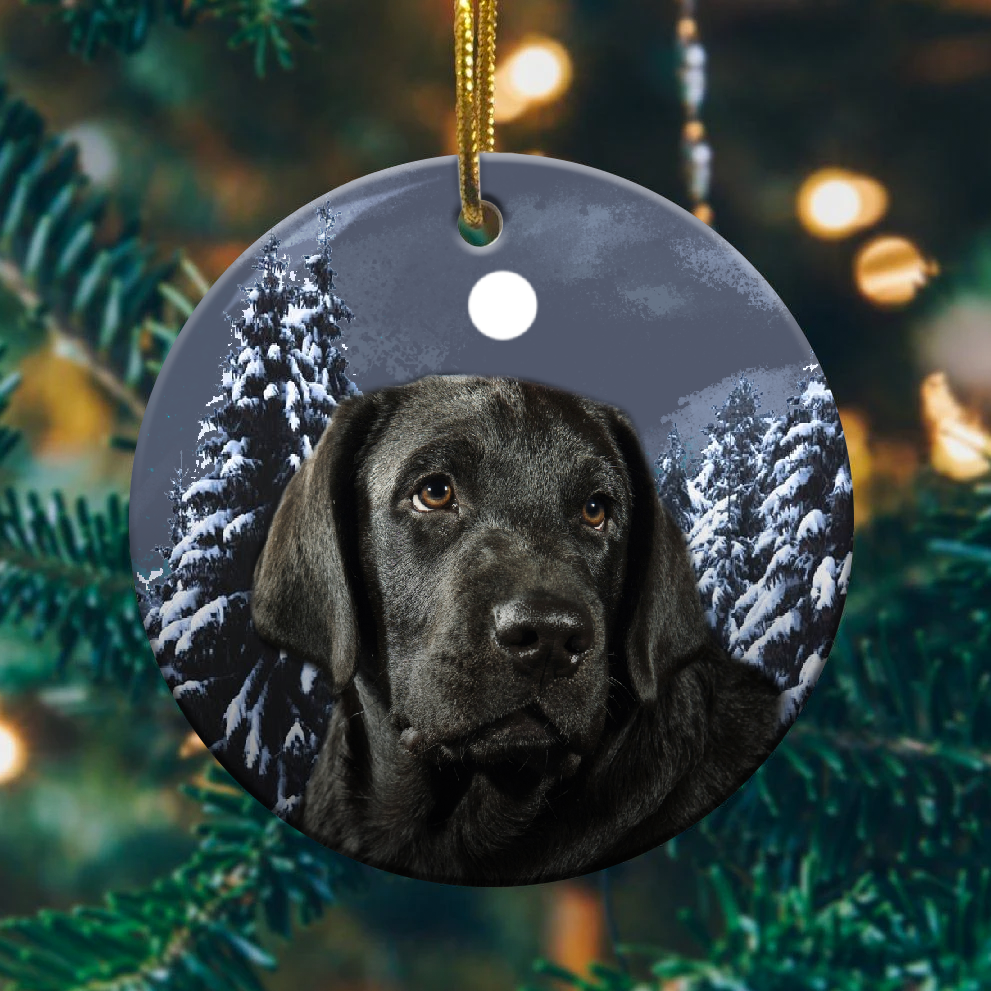 Black lab christmas ornaments 1